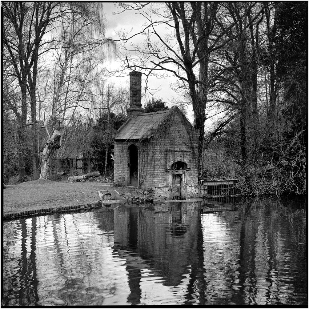 Waterhouse Pond, BushyPark